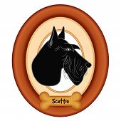 picture of scottish terrier  - Scottish Terrier dog profile portrait in cherry wood mat frame - JPG
