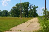 picture of weed  - Abandoned lonely road with weeds and overgrown shrubs representing an economic depression taken in America - JPG
