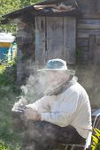 picture of smoker  - bee - JPG