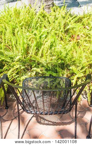 wrought iron chair on sunny terrace in garden