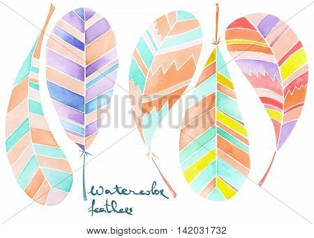 Set of colored abstract feathers painted in watercolor on a white background