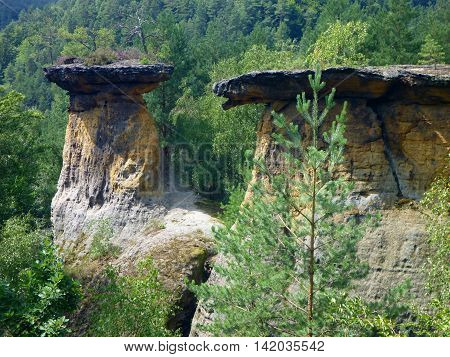 Beautiful Sandstone Tower Formations In Czech Republic