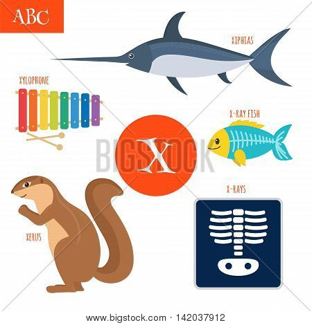 Letter X. Cartoon Alphabet For Children. Xylophone, X-rays, X-ray Fish, Xerus, Xiphias