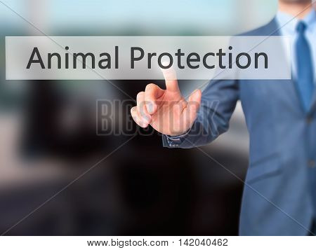 Animal Protection -  Businessman Press On Digital Screen.