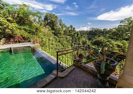Infinity pool on terrasse overlooking the wild forest