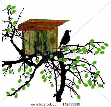 Deciduous tree with wooden birdhouse and silhouette of bird