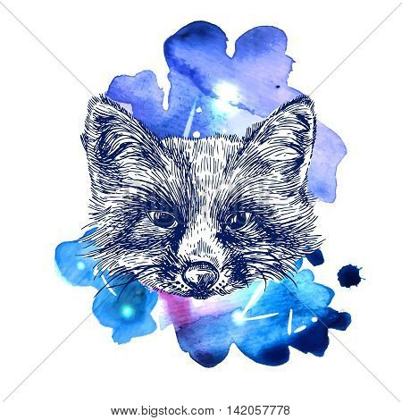 Beautiful hand drawn vector illustration sketching of fox on space watercolor background. Tattoo style drawing. Use for postcards, print for t-shirts, posters, case for smartphone