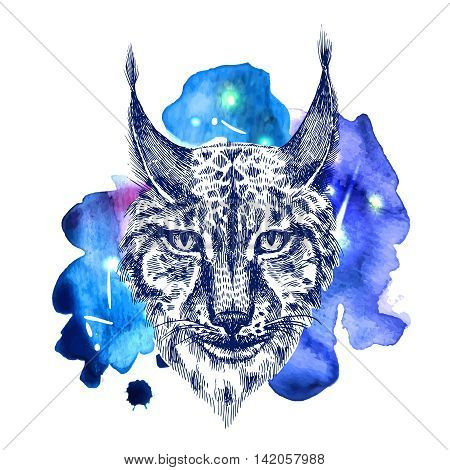Beautiful hand drawn vector illustration sketching of lynx on space watercolor background. Tattoo style drawing. Use for postcards, print for t-shirts, posters, case for smartphone