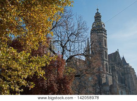 Saint Elisabeth Cathedral (Kosice Slovakia) in autumn season. Yellow tree is foreground blue sky - in background. This is the largest church in Slovakia.