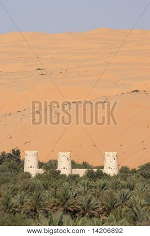 Arabian Fort