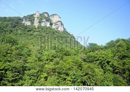 A stone cliff rising up throught the trees within Zhangjiajie national forest park in Hunan province China.