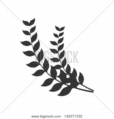 laurel branch leaf nature natural symbol border  insignia vector graphic isolated and flat illustration