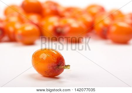 Sea-buckthorn berries on a white background. Selective focus.