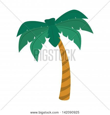 palm summer natural sand beach sea single palmtree vector graphic isolated and flat illustration