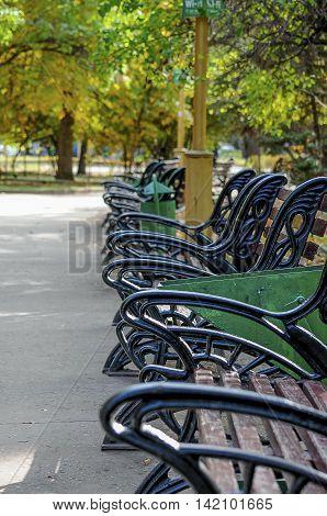 autumn  many wrought-iron benches the park sorrow