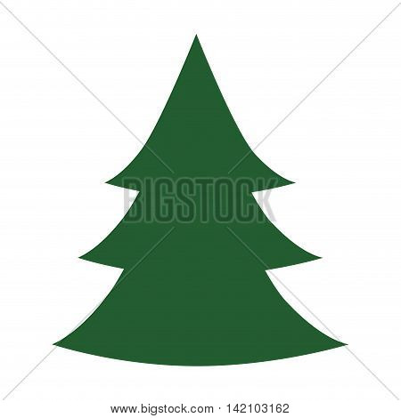 christmas tree tradition december decoration season object vector graphic isolated and flat illustration