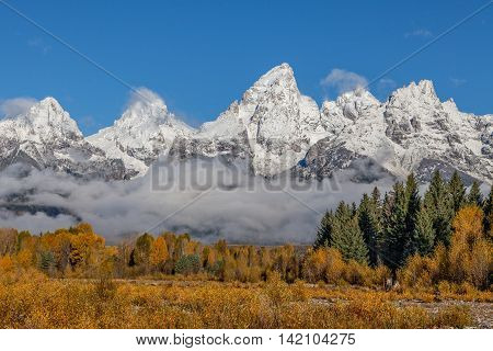the scenic landscape of the snow covered tetons in autumn