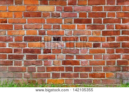Brown brick wall with green grass, background image