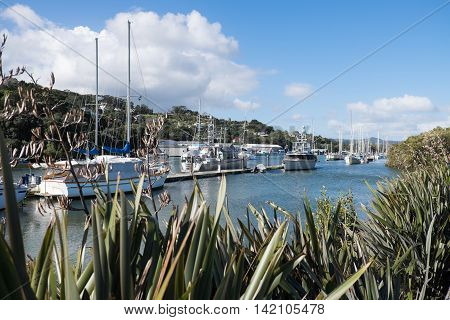 Boats moored at Whangarei Marina in the town basin - Northland New Zealand NZ.