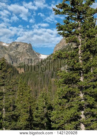 Rugged Hallett Peak above treeline on a summer day