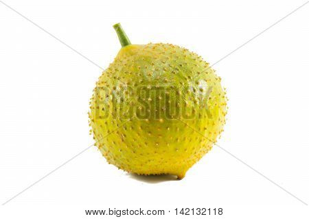 Green baby Jackfruit isolated on white background.fruit for health1