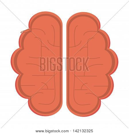 flat design single brain icon vector illustration