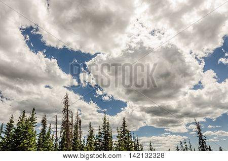Cumulus clouds making a blue sky dramatic