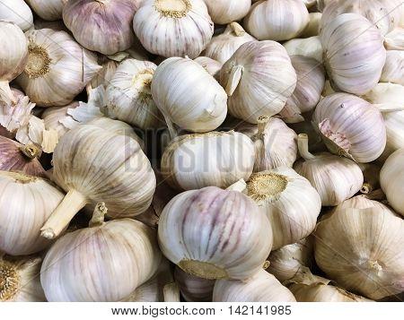 Bulk of white garlic for texture background
