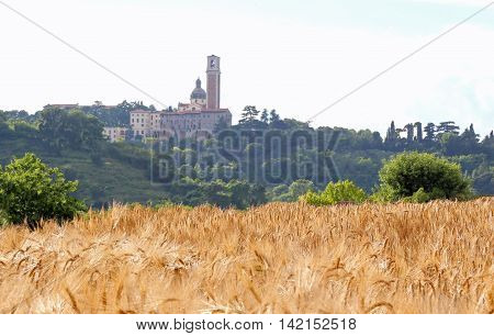 sanctuary dedicated to St Mary and the field of yellow ripe wheat ears