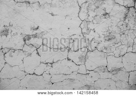 Crack In The Concrete Wall