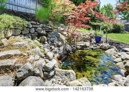 Beautiful Landscape Design On Backyard. View Of Small Pond With Rocks.