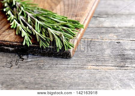 Raw green rosemary sprigs on a kitchen board and an old wooden background with empty space for text. Aromatic herb used in cooking, medicine, cosmetics. Closeup