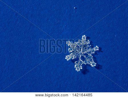 microscopic shot of natural brilliant snow flakes