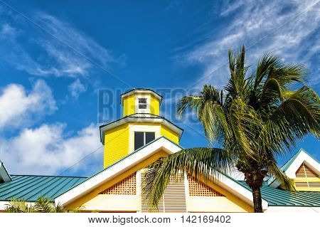 green palm tree in windy weather near yellow building house roof in summer sunny day outdoor on cloudy blue sky background