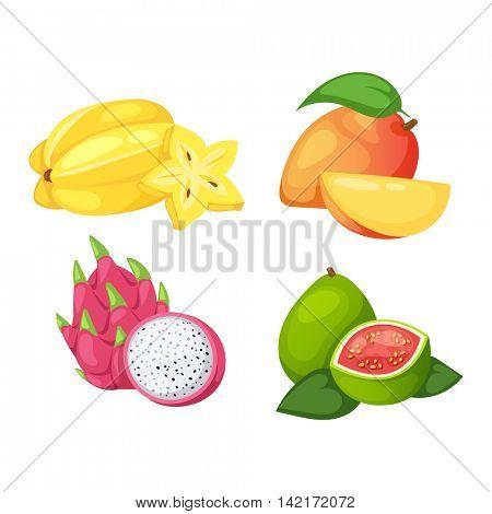 Tropical fruits vector set.