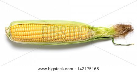 Ear of corn on white background