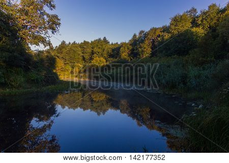 morning on the river Luga ,Novgorod oblast, Russia