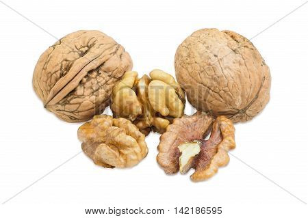 Two walnuts in their shell and several shelled kernels closeup on a light background