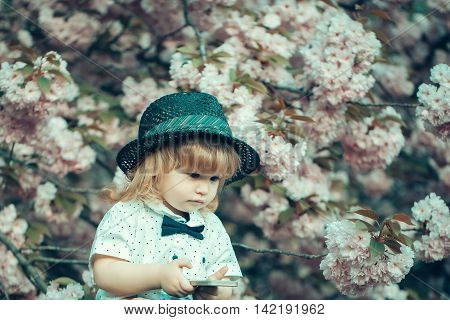 Small boy in white shirt and retro hat with bow tie with blonde hair playing on mobile phone in spring pink flower blossom