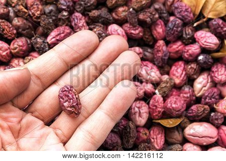 Fruits kept dried naturally pile together for cultivation. The seeds for the planted in hand.