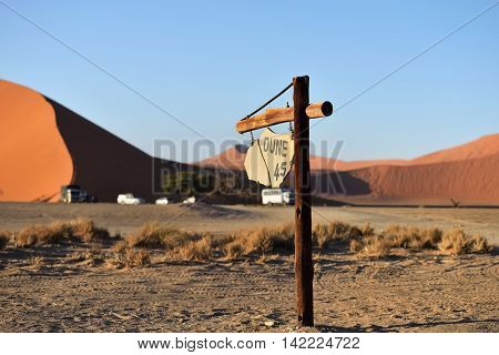Pointer Dune 45. The most known dune in Namib desert at sunrise Namibia Africa