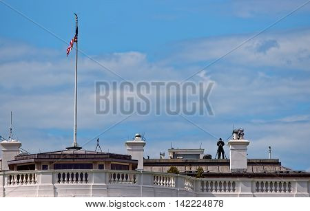 Man On The Roof Of The White House
