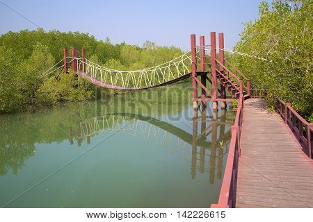 Hanging wooden tourist path in the mangroves. The surroundings of Hua Hin Southern Thailand