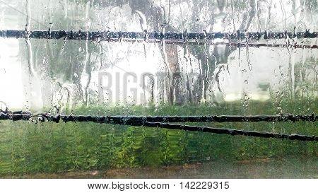 Today the rain running down the window.