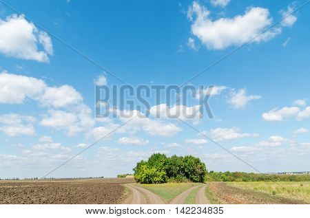 two rural roads in field and blue sky with clouds
