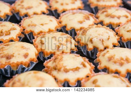 The Freshly baked muffins in metal tins