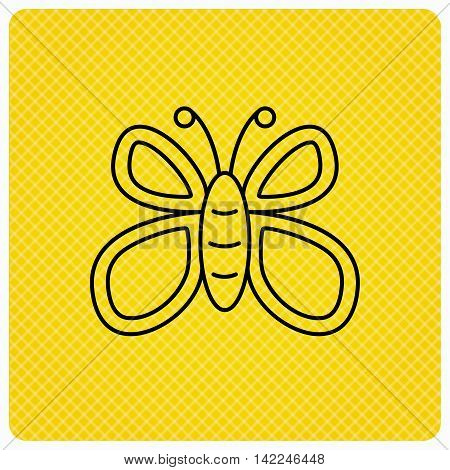 Butterfly icon. Flying lepidoptera sign. Dreaming symbol. Linear icon on orange background. Vector
