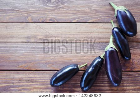 Frame Eggplants vegetable squash in a row