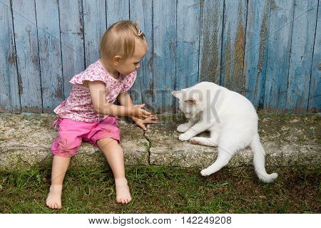 Funny little child playing with white cat outdoors