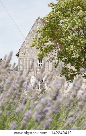 Scene in Crissay-sur-Manse, typical French village with charming and romantic images and vistas, village in the Loire Valley.